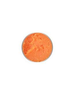 4 Pro Nail Tech Artistic Rainbow Gel 7g - Neon Orange