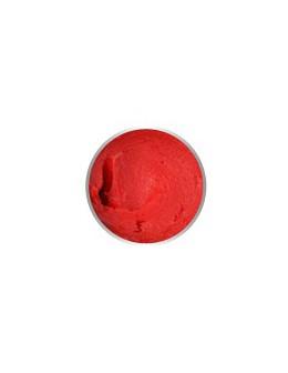 4 Pro Nail Tech Artistic Rainbow Gel 7g - Neon Red