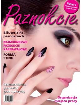 """Profesjonalne pismo dla minicurzystów i pedicurzystów """"Paznokcie"""" 64 (5/2013)"""