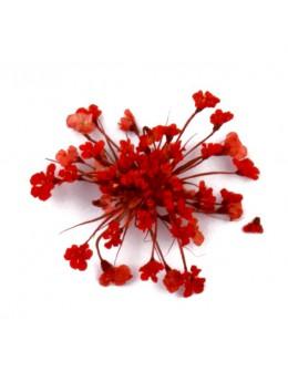 Kwiatki suszone 20szt - czerwone