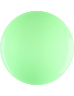 4Pro Nail Tech Paint Gel 5g - Light Green