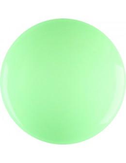 Farbka żelowa 4Pro Nail Tech Paint Gel 5g - Light Green