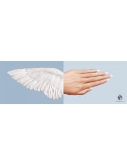 Entity Plakat Wings