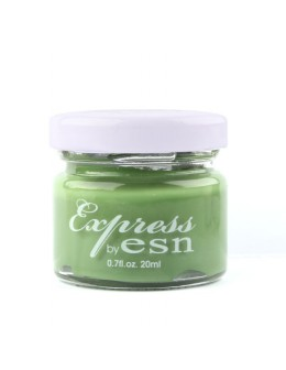 Express by ESN Acrylic Paint 20ml - no 15
