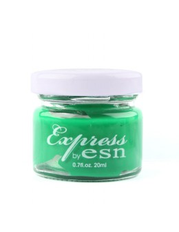 Express by ESN Acrylic Paint 20ml - no 17