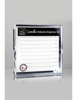 CLD 5D Camellia Volume Express