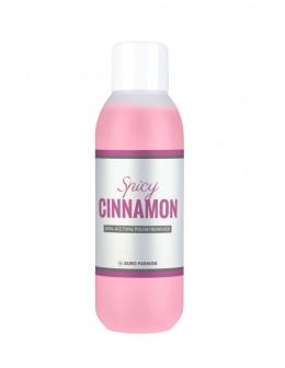 Zmywacz Euro Fashion Cinnamon 500ml