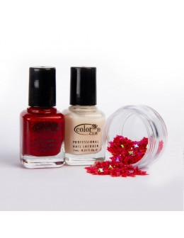 A set of 2 varnishes Color Club mini - set 2