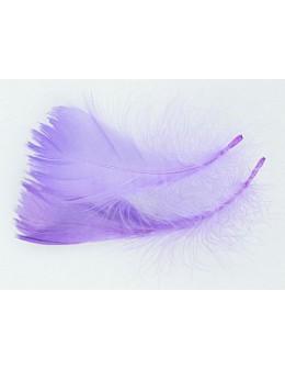 Pióro barwione 2szt - neonowy fiolet