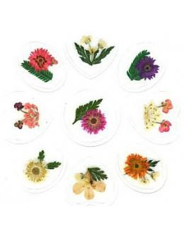 Kwiatki suszone nr 2 - naklejki 3D