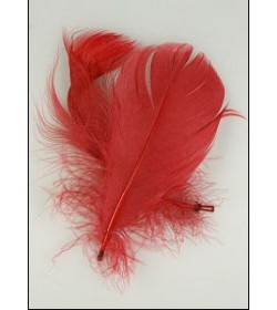 Color Feather 2pcs - red