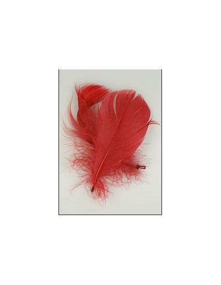 Pióro barwione 2szt - czerwone
