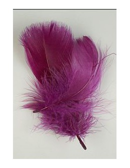 Pióro barwione 2szt - fioletowe