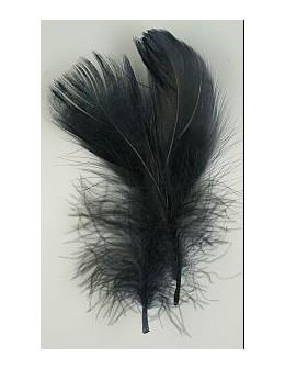 Pióro barwione 2szt - czarne